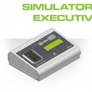 SIMULATORE_EXECUTIVE_PROFILO